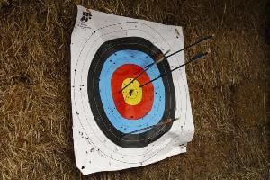 Arrows stuck into archery target