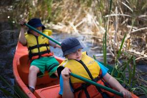 Two boys paddling through reeds in orange canoe