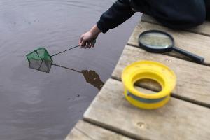 Student using net in dam