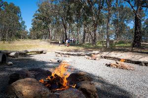 Multiple small burning campfires